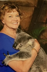 Koala Hug close 2
